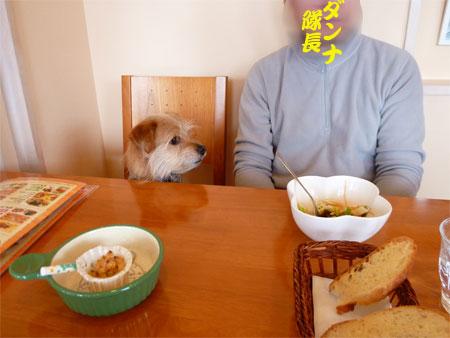 (早く食べるだ。)