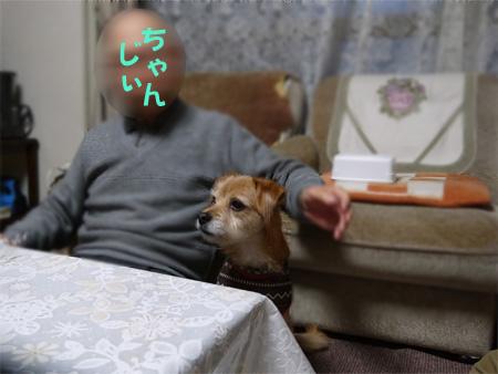 ( じぃちゃん、おらだ )のじぃちゃんだ )