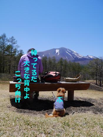 ( 浅間山を見ながら )