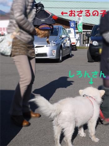 ( おら犬じゃないだ )
