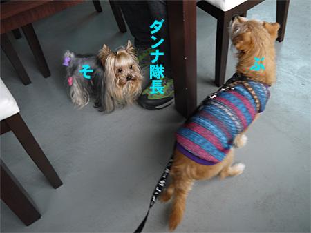 ( おやつの続きだ )