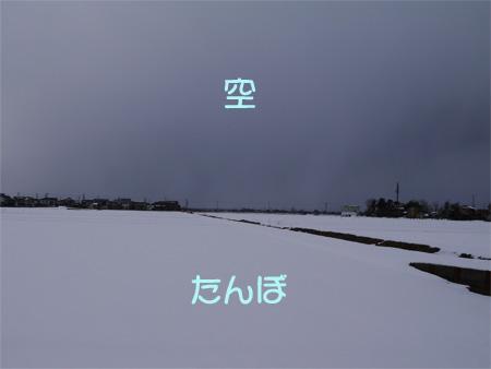 ( どよよ~ん )