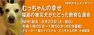 ( 9月23日放送 )