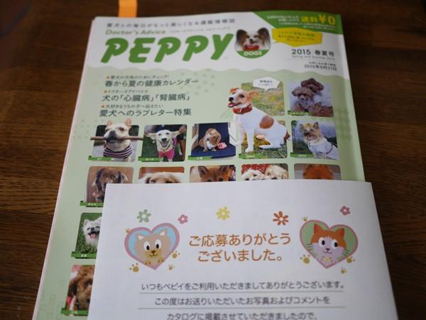 ( PEPPY 2015春夏号 )