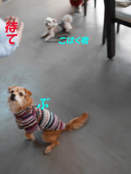 ( おらだって〜 )