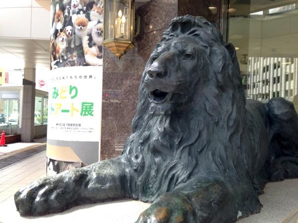 ( ライオン健在! )