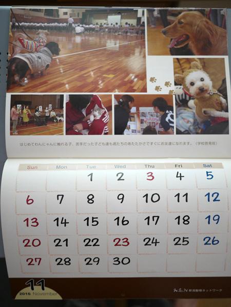 ( NDNカレンダー2016 )