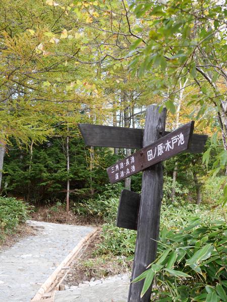 ( 田ノ原湿原の入口 )