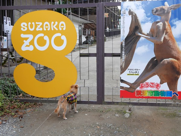 ( 須坂市動物園 )
