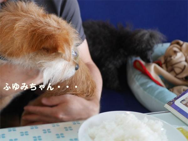 ( ベッドかぁ~ )