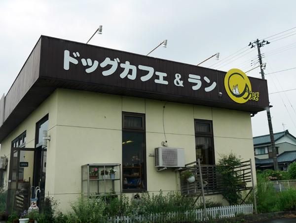 ( ドッグカフェ&ラン月うさぎ )
