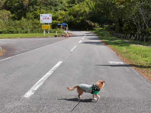 ( 山形県と福島県 )