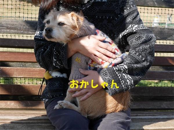 ( 愛があふれてるだよ )
