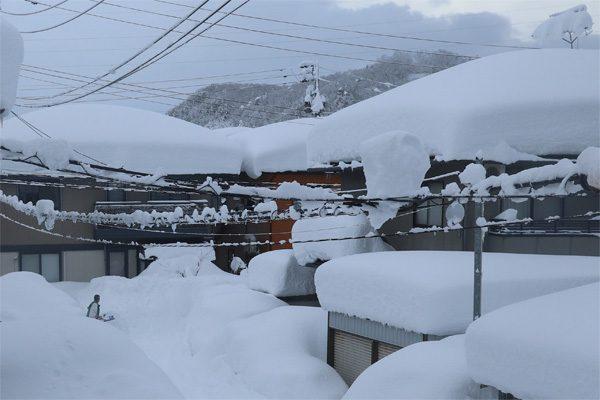 ( 落ちない雪 )