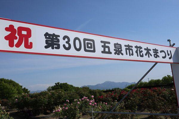 (  五泉市東公園牡丹園 )