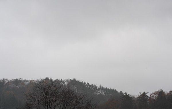 ( 冷たい雨 )