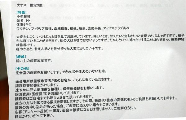 ( 里親募集の紹介文 )